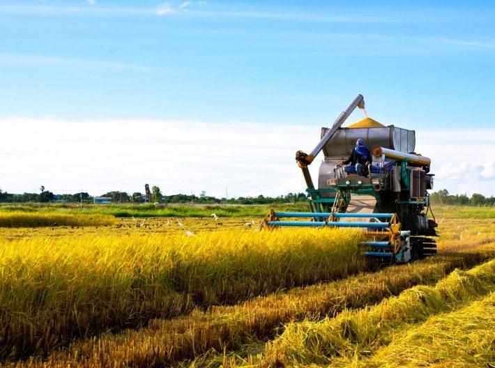 fertilizer equipment utilizing natural gas to fertilize crops