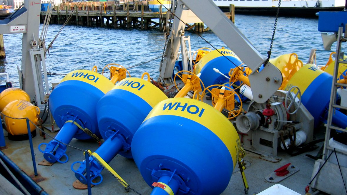Whale acoustic buoys at NEG